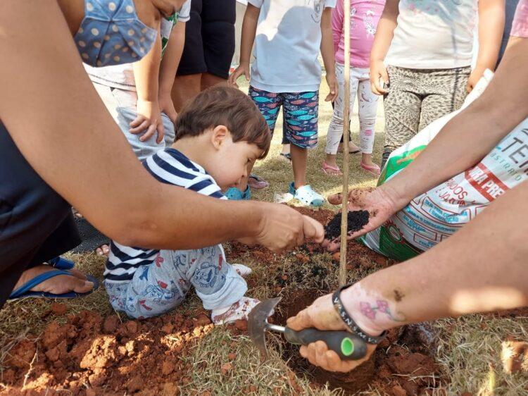 Alunos  plantam árvores em comemoração ao Dia da Árvore