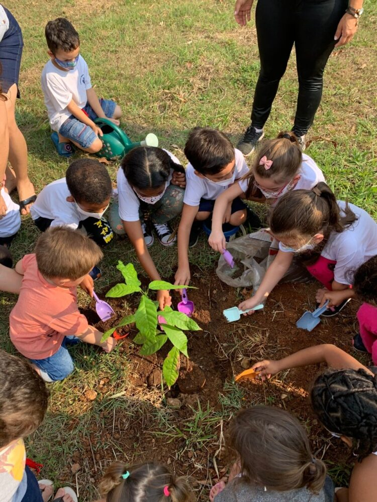 Alunos da Neusa Lapolla realizam ações voltadas para o meio ambiente